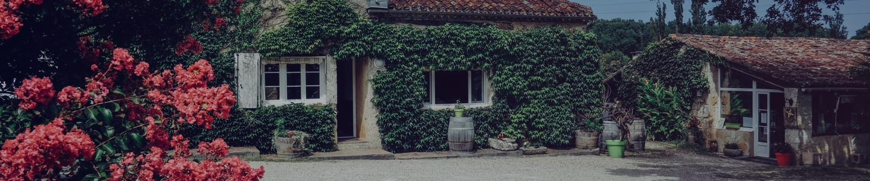 photo vins